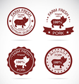 Pig label vector image