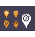 Bitcoin icons vector image