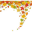 autumn falling leaf background with place for text vector image