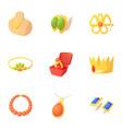 jewelry icons set cartoon style vector image