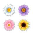set of paper art flowers vector image