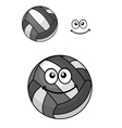 Two volleyball balls vector image vector image