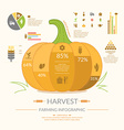 Farming Harvest Infographic vector image