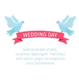 Two birds with a ribbon vector image