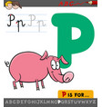 letter p with cartoon pig vector image