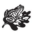 black frog vector image