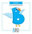 alphabet letter b and bird vector image