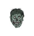 Zombie Skull Head Drawing vector image