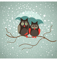 Two cute sad owls in wintertime vector image