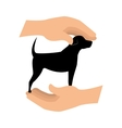 hands with dog pet design vector image