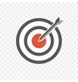 hit the bullseye vector image