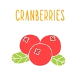 Cranberries superfood isolated on white vector image