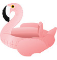 flamingo float vector image