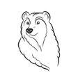 Bear head logo template mascot emblem vector image vector image