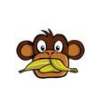 speak no evil monkey vector image vector image