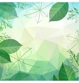 Abstract spring and summer background with leaves vector image