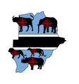 Big Five cross hairs Botswana vector image