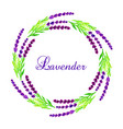 watercolor lavender frame vector image