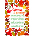 autumn fallen leaf poster with fall nature frame vector image