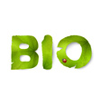 bio word made from green leaves vector image