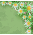 Vintage abstract background with flowers vector image vector image