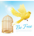 canary flying from cage poster vector image
