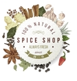 spice shop paper emblem with different spices vector image
