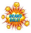 Grand sale vector image