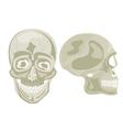 Two human skulls vector image