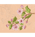 Colored Sketch of Sakura Branch vector image