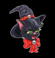 cute witch cat vector image