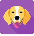 dog Beagle icon flat design vector image