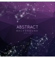 Abstract 3d polygonal background Low poly vector image