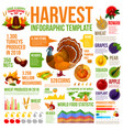 autumn harvest infographic for thanksgiving design vector image