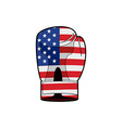 Boxing Glove with flag of USA Sports accessory vector image