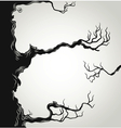 Black tree branches silhouette vector image