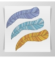Set of three hand-drawn graphic Feathers vector image