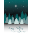 Winter Night Landscape with Star of Bethleh vector image