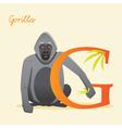 G for gorilla vector image