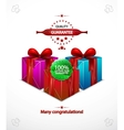 holiday poster with gift vector image vector image