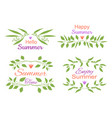 elegant floral decorative elements set with summer vector image vector image