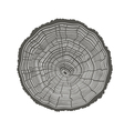 tree rings isolated vector image vector image