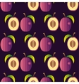 Fresh fruits Plum pattern vector image
