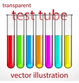 Transparent test tubes with colored liquids vector image