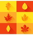 Autumn leaves in flat design style vector image vector image
