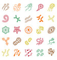 set of bacteria and virus icons vector image