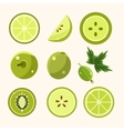 Fresh Green Fruits And Vegetables Set vector image
