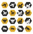 set of bees vector image vector image