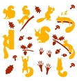 set of orange furry squirrels with nuts vector image