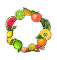 round frame of tropical fruits with empty place vector image
